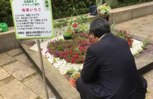 flower20180526_02