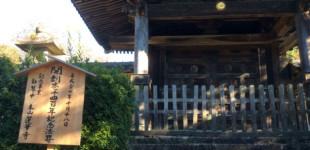 ibukiyama20141029_10