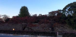 ibukiyama20141029_15
