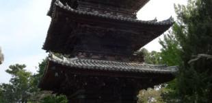 wakayama20151030_04