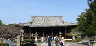 wakayama20151030_05
